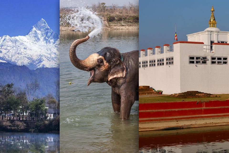 Pokhara Chitwan Lumbini Tour